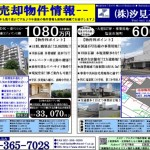 H28.12.3(土)河北新報 折込広告・表面